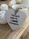 Shabby Personalised Chic Heart Gift ~ Friend ~ Humour ~ Birthday ~ Teenagers - 253453025863